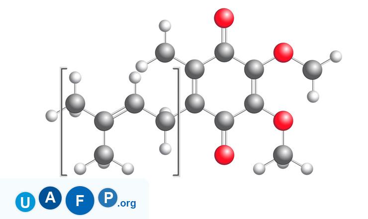 Coenzyme Molecule